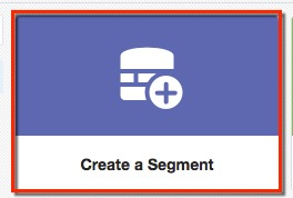Create a segment button.