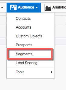 Under Audience menu, click Segments